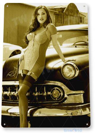 tin sign b545 headlightshot rod pin-up girl auto shop garage cave tinworld tinsign_com
