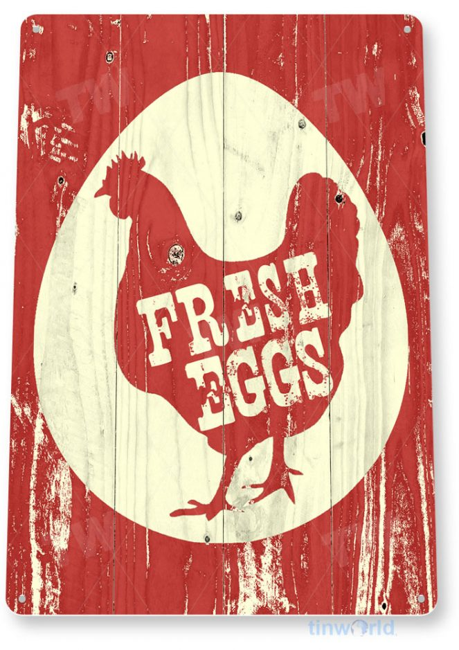tin sign c955 laid eggs daily sign tinworld tinsign_com tinworld tinsign_com
