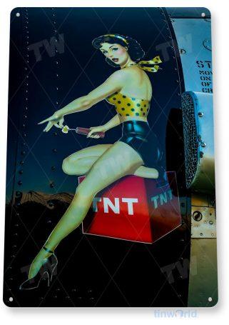 tin sign d006 tnt sign tinworld tinsign_com tinworld tinsign_com